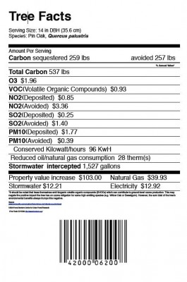 picture of tree nutrition label