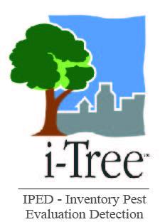i-Tree IPED Logo