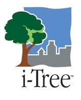 i-Tree_Logo1