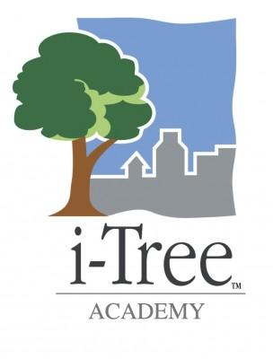 itree academy logo 2