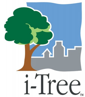 itree logo copy